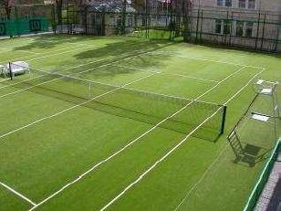 tenisui