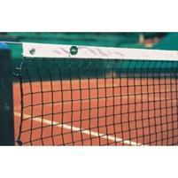 Lauko teniso tinklas